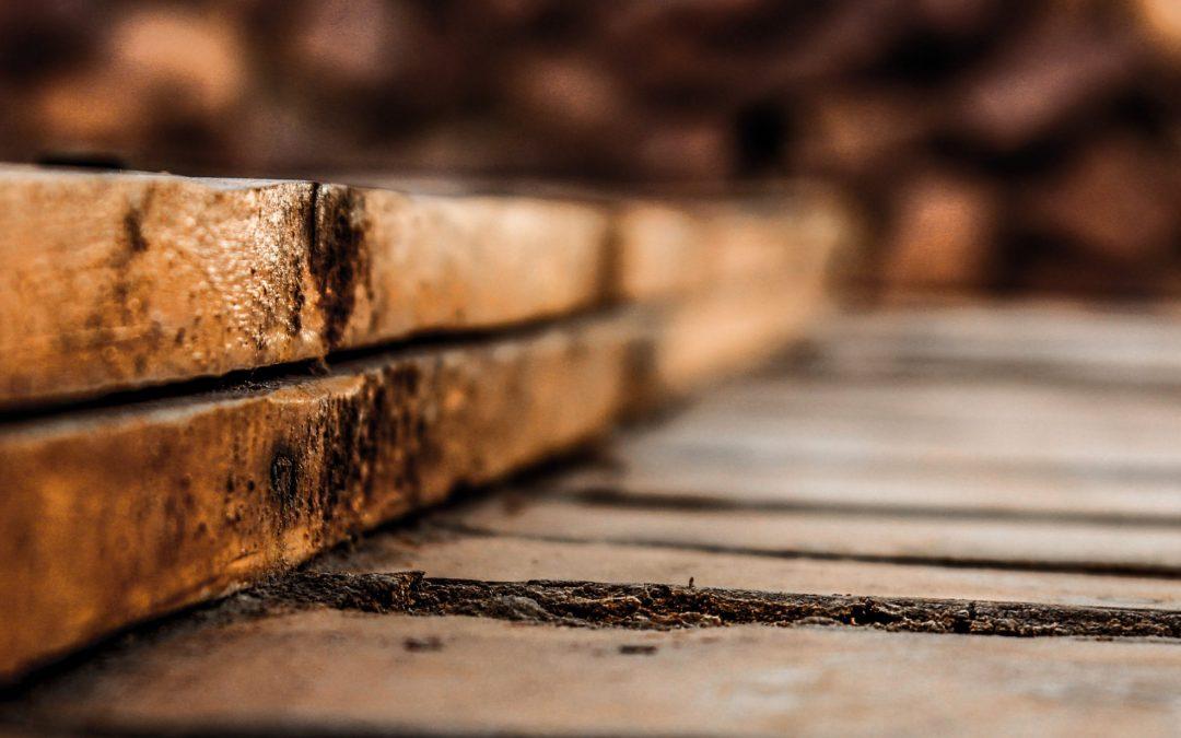 Wood craft Nuremberg 2020